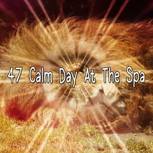 47 Calm Day At The Spa | Musica para Dormir Dream House