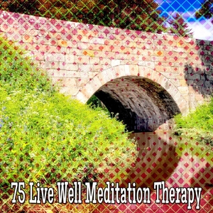 75 Live Well Meditation Therapy | White Noise Meditation
