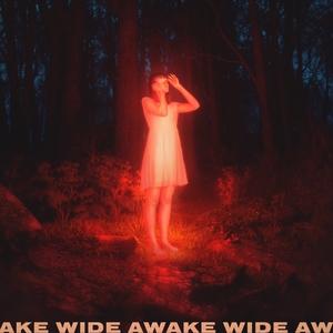 Wide Awake | Petit Biscuit