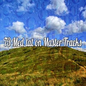 73 Meditation Master Tracks   Focus Study Music Academy