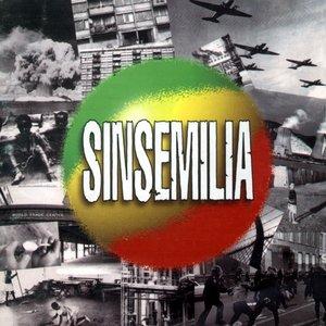 Première récolte | Sinsemilia