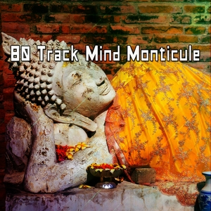 80 Track Mind Monticule | Zen Meditation and Natural White Noise and New Age Deep Massage