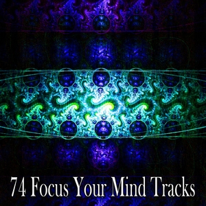 74 Focus Your Mind Tracks | Zen Meditation and Natural White Noise and New Age Deep Massage