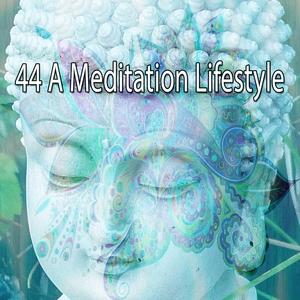 44 A Meditation Lifestyle | White Noise Meditation