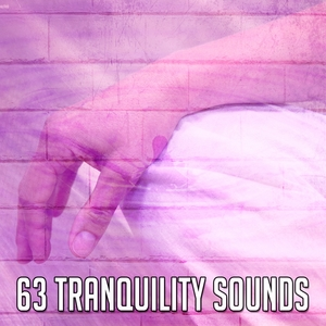 63 Tranquility Sounds | Zen Meditation and Natural White Noise and New Age Deep Massage