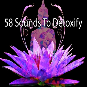 58 Sounds to Detoxify | Focus Study Music Academy