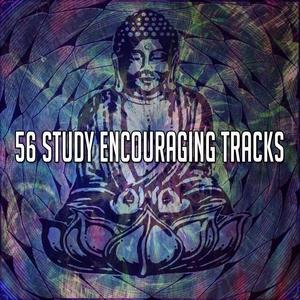 56 Study Encouraging Tracks | White Noise Meditation