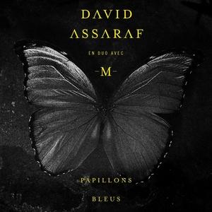 Papillons bleus | David Assaraf