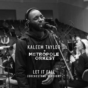 Let It Fall   Metropole Orkest