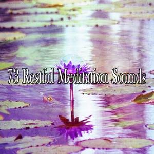 73 Restful Meditation Sounds  