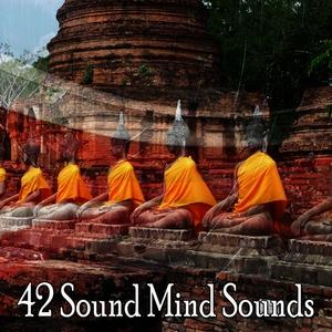 42 Sound Mind Sounds | Focus Study Music Academy