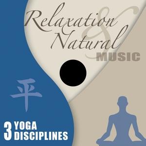 Yoga Disciplines | John Toso