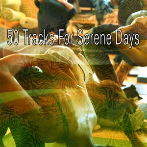 50 Tracks for Serene Days | Zen Meditation and Natural White Noise and New Age Deep Massage