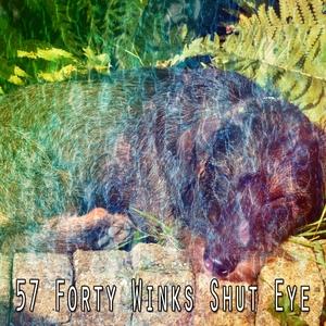 57 Forty Winks Shut Eye | Musica para Dormir Dream House