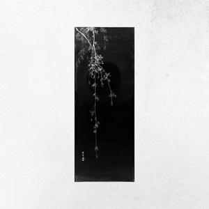 After the Rain - Rework | Mattia Cupelli