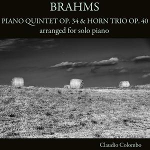 Brahms: Piano Quintet, Op. 34 & Horn Trio, Op. 40 | Claudio Colombo
