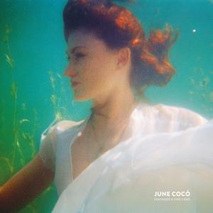 Fantasies & Fine Lines   June Cocó