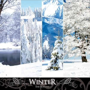 The Seasons: Winter | Philippe Bestion