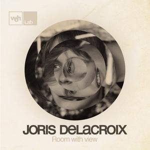 Room With View   Joris Delacroix