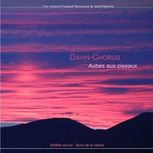 Naturophonia: Dawn-Chorus, aubes aux oiseaux   Fernand Deroussen