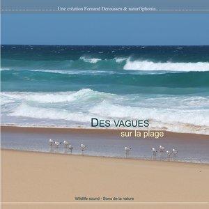 Naturophonia: Des vagues sur la plage | Fernand Deroussen