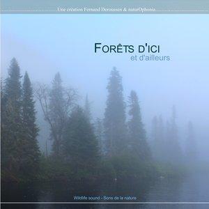 Naturophonia: Forêts d'ici et d'ailleurs | Fernand Deroussen