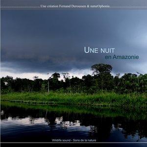 Naturophonia: Une nuit en Amazonie   Fernand Deroussen