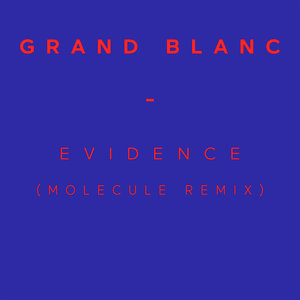 Evidence (Molecule Remix) - Single | Grand Blanc