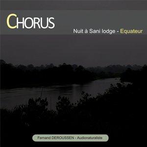 Chorus : Nuit à Sani Lodge (Equateur) | Fernand Deroussen
