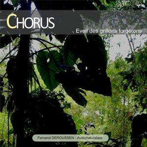 Chorus : Éveil des grillons forgerons (Guadeloupe) | Fernand Deroussen