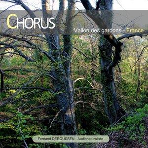 Chorus : Vallon des Gardons (France) | Fernand Deroussen