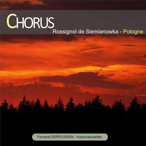 Chorus : Rossignol de Siemianowka (Pologne) | Fernand Deroussen