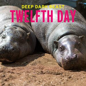 Deep Dark Beast | Twelfth Day