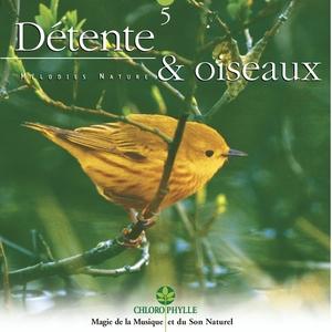 Chlorophylle 5 : Détente & oiseaux | Relaxing Zen Nature