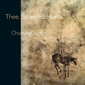 Churning strides | Stranded Horse