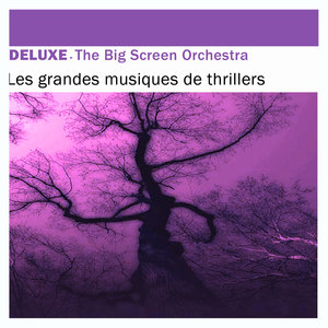 Deluxe: Les grandes musiques de Thrillers | The Big Screen Orchestra