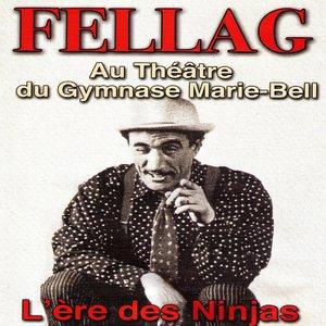 L'ère des ninjas (Au théâtre du gymnase Marie-Bell) | Fellag