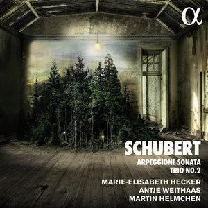 Schubert: Arpeggione Sonata & Trio No. 2 | Martin Helmchen