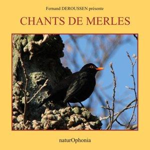 Naturophonia: Chants de merles | Fernand Deroussen