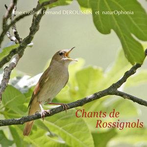 Naturophonia: Chants de rossignols | Fernand Deroussen