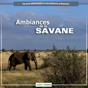 Naturophonia: Ambiances de la savane | Fernand Deroussen