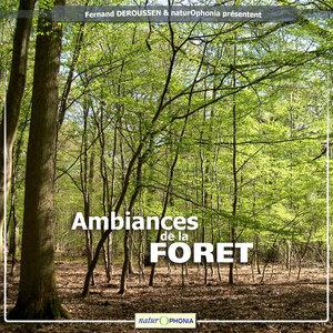 Naturophonia: Ambiances de la forêt | Fernand Deroussen