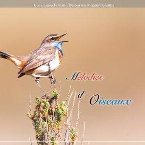 Naturophonia: Mélodies d'oiseaux   Fernand Deroussen