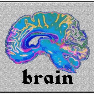 Brain | Remi