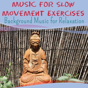 Music for Slow Movement Exercises  - Background Music for Relaxation | Relaxation Sound Orchestra