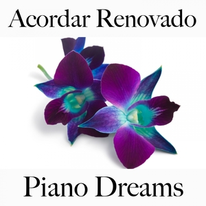 Acordar Renovado: Piano Dreams - A Melhor Música Para Relaxar   Ralf Erkel