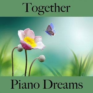 Together: Piano Dreams - The Best Music For The Time Together | Ralf Erkel