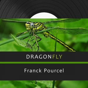 Dragonfly | Franck Pourcel