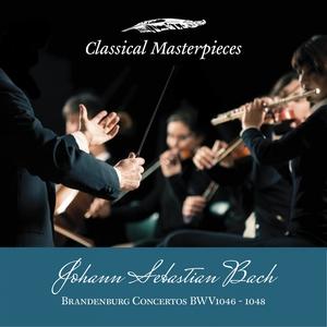 Johann Sebastian Bach: Brandenburg Concertos BWV1046-1048 | Helmuth Rilling