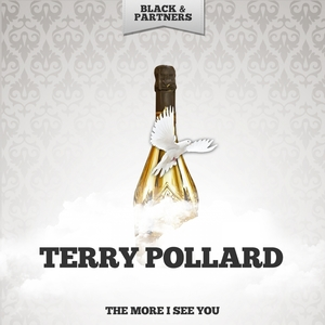 The More I See You | Terry Pollard
